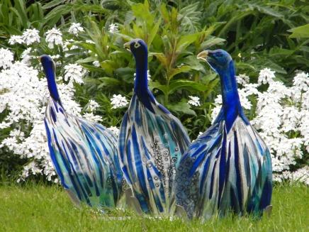 Guinea Fowls